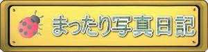 20150413_hpsozai